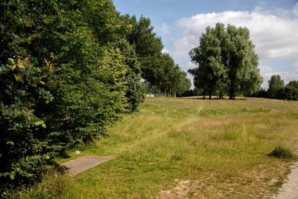 Weserufer DiscGolfPark (WUP)
