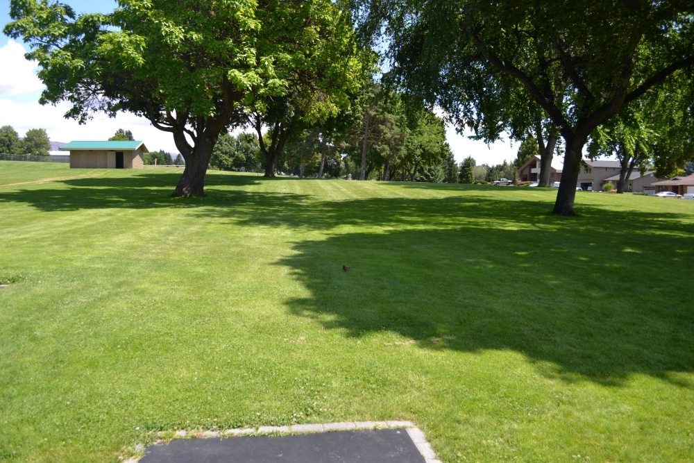 Hole #1: Basket is to the right of the rightmost tree