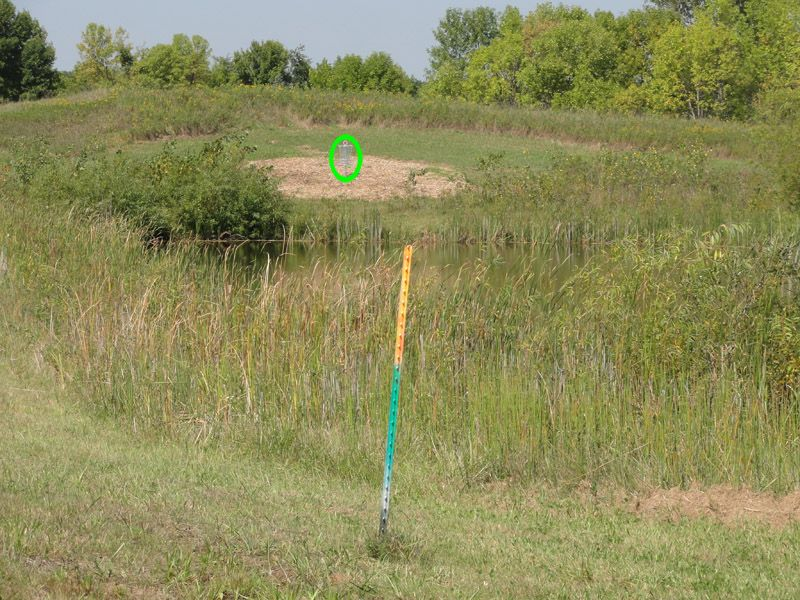 New Market Disc Golf Course