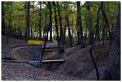 Lemon Lake County Park - Gold