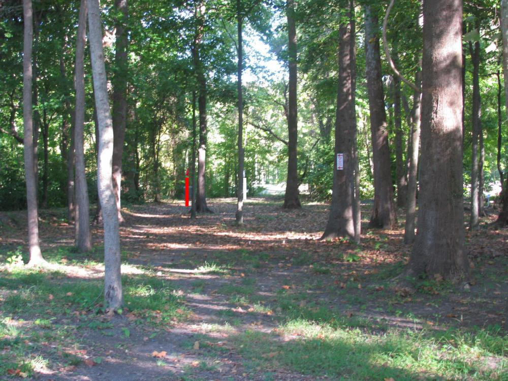 Hampton 9 Disc Golf Course