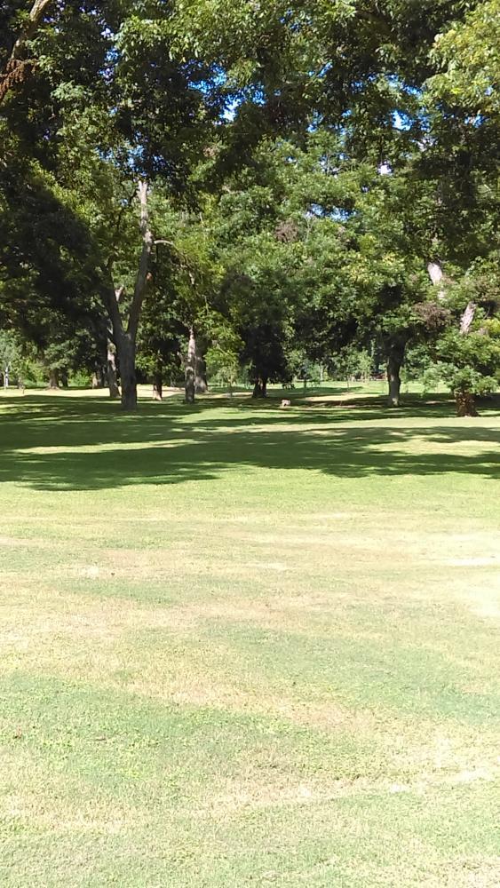 Max Starcke Disc Golf Course