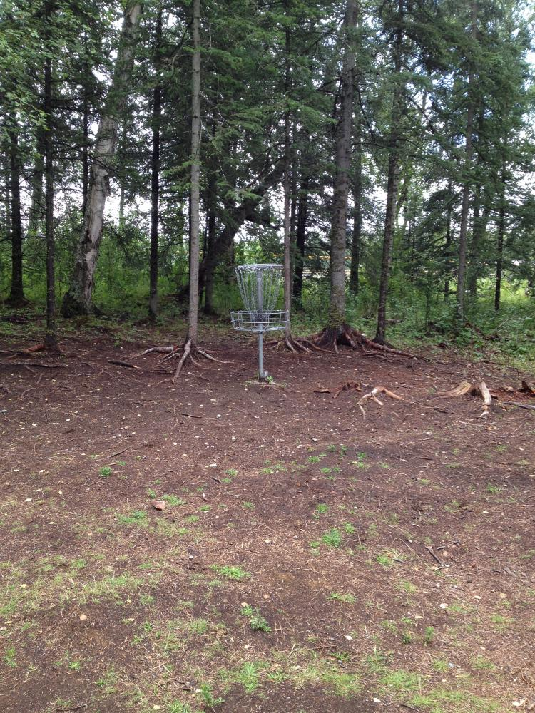 Alcantra Disc Golf - Big Su