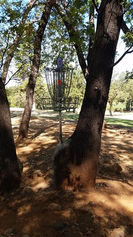 Lava Creek Disc Golf
